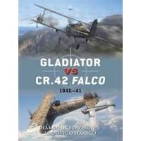 47,Gladiator vs CR.42 Falco 1940-41