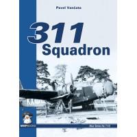 311 Squadron