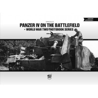 10,Panzer IV on the Battlefield