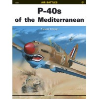 01 P-40s of the Mediterranean