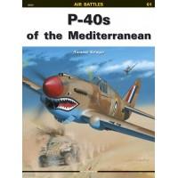 01,P-40s of the Mediterranean