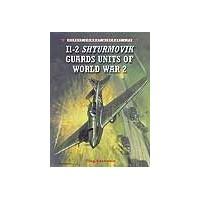 071,Il-2 Shturmovik Guards Units of World War 2