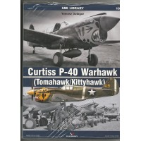 10,Curtiss P-40 Warhawk (Tomahawk/Kittyhawk)