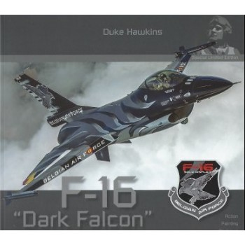 Aircraft in Detail Special : F-16 Dark Falcon