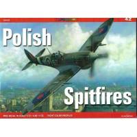 42, Polish Spitfires